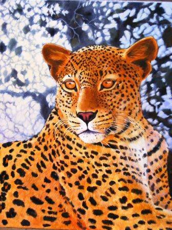 Nguni & leopard 013